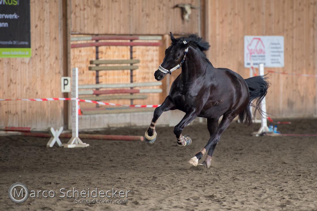 C2018-03-10-8003 - Freispringen - Schlumpf