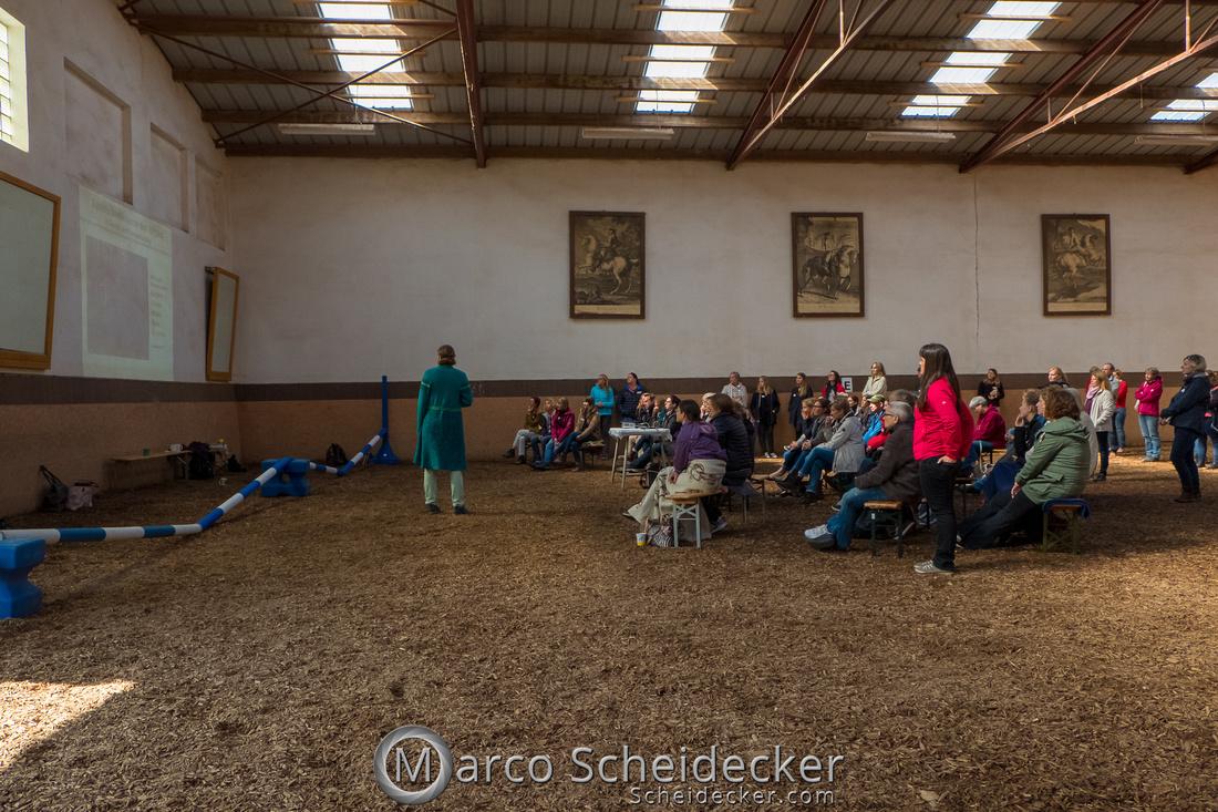 C2018-04-29-0215  -  Ruth Giffels Morgenarbeit 2018 - Thema - Sprache des Pferdes