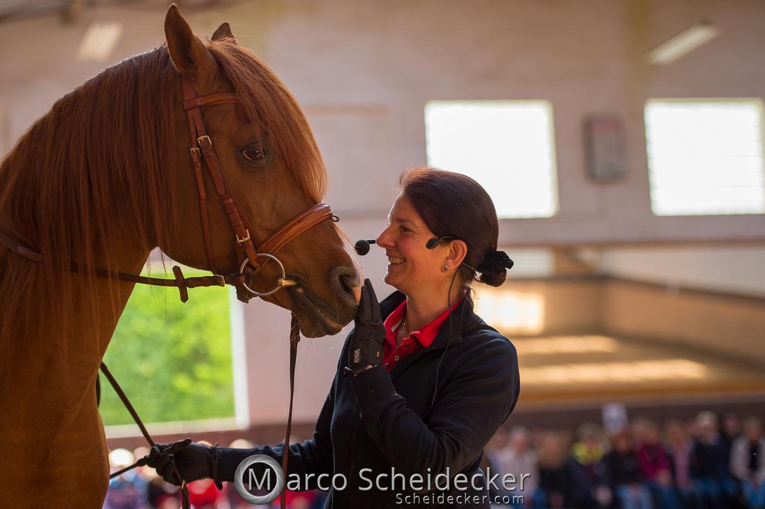 C2018-04-29-0335  -  Ruth Giffels Morgenarbeit 2018 - Thema - Sprache des Pferdes
